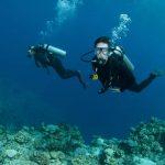 Divemaster Internship Cyprus