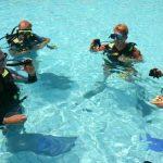 5 Star Dive School