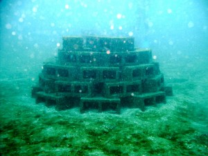 Artificial Reef Made with Blocks